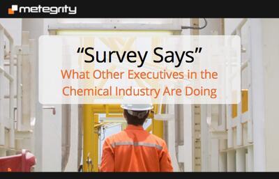 Survey Says - What Other Executives in the Chemical Industry Are Doing